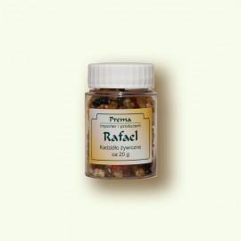 Incense Rafael - 20 g